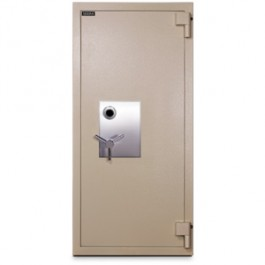 MTLF6528 Mesa UL TL-30 Rated Burglary and Fire Safe  Closed